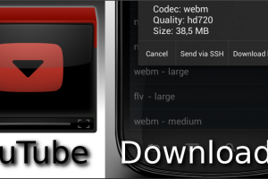 dentex-youtube-downloader