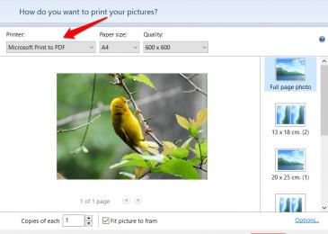 print-single-image-pdf